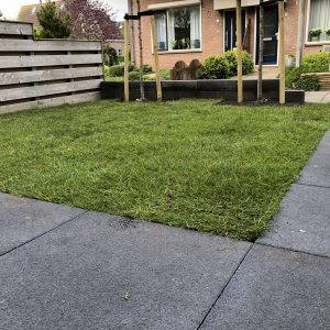 Gras zoden Direct bestrating