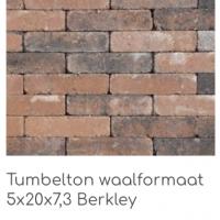 Tumbelton waalformaat 5x20x7,3 Gothic Berkley