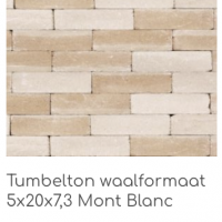 Tumbelton waalformaat 5x20x7,3 Mont Blanc