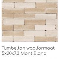 Tumbleton waalformaat 5x20x7,3 Mont blanc